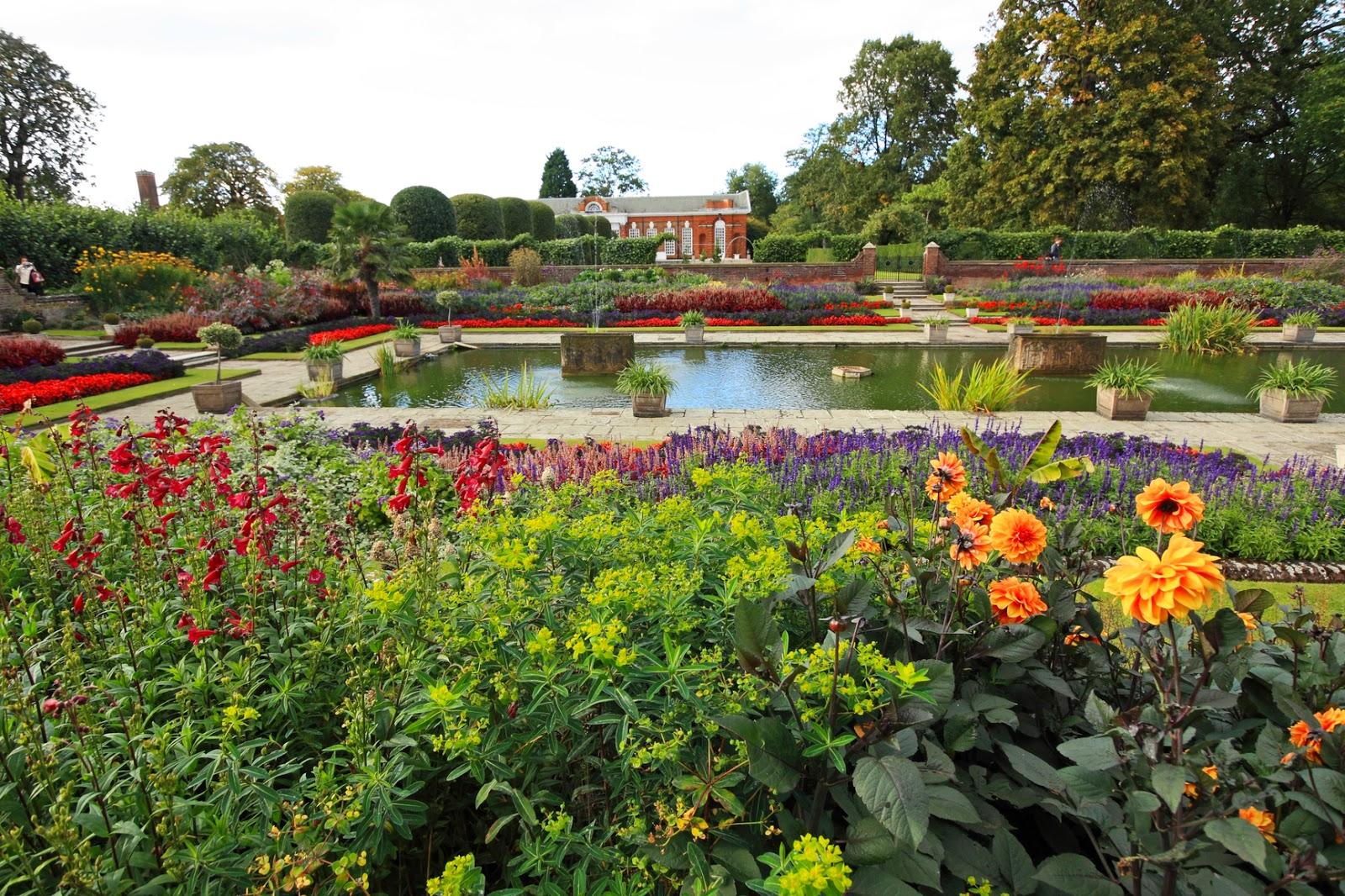 Fondos De Pantalla De Flores Hermosas Para Fondo Celular: Imagenes De Jardines Con Flores