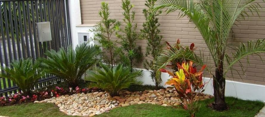 imagenes de jardines — imagenes decoración proyectos de jardín